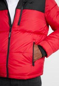 Hollister Co. - PUFFER HOOD  - Winter jacket - red - 4