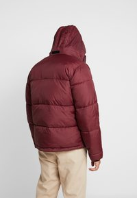 Hollister Co. - PUFFER MOCK BURG - Winter jacket - burgundy - 3