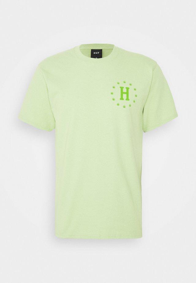 GALAXY STRAINS TEE - T-shirts print - pistachio