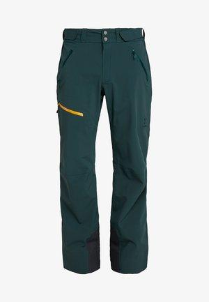 STIPE PANT MEN - Spodnie narciarskie - mineral
