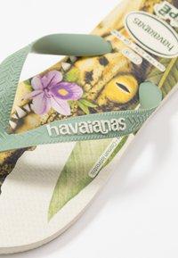 Havaianas - IPE - Chanclas de dedo - beige/mineral green - 6