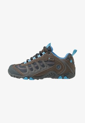 PENRITH LOW WP WOMEN  - Hiking shoes - grey/charcoal/cornflower