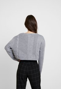 Honey Punch - NECK CROPPED LOVE SLEEVE - Trui - grey - 2