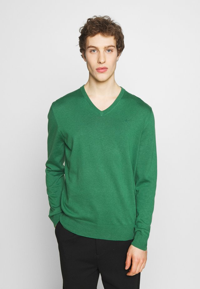 V NECK - Strikkegenser - fresh green