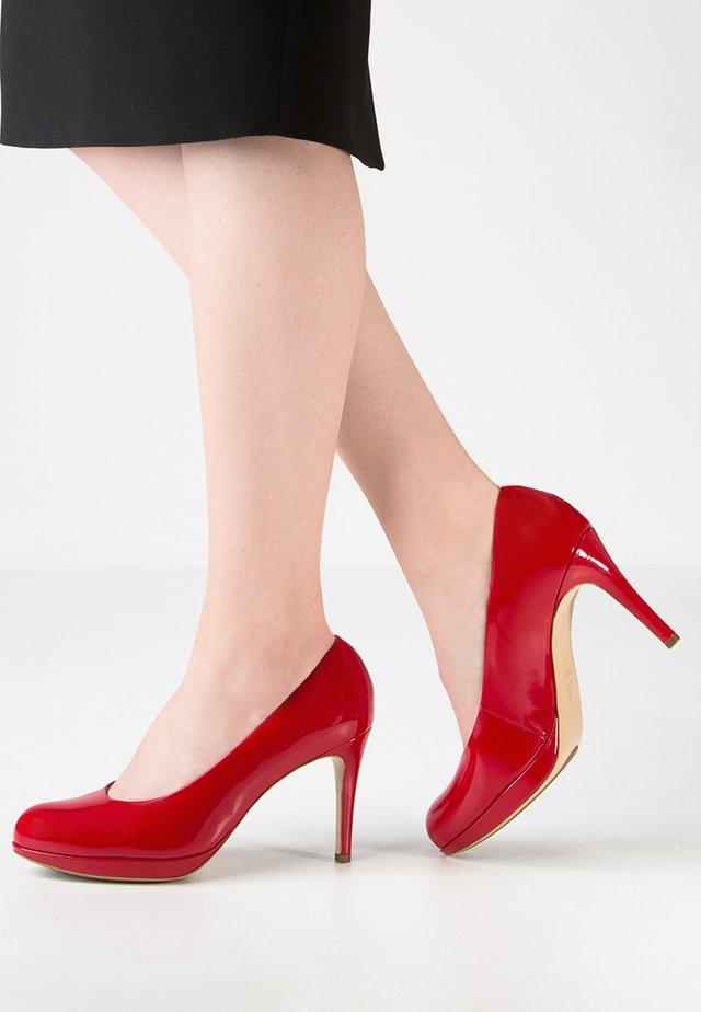 Korolliset avokkaat - red