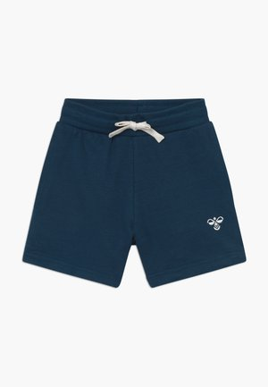 BASSIM SHORTS - Sports shorts - majolica blue