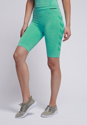 SEAMLESS CYCLING - kurze Sporthose - ice green melange