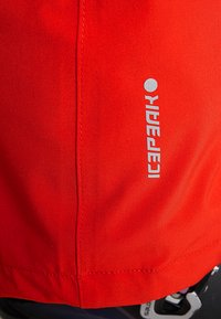 Icepeak - NOELIA - Pantaloni da neve - coral red - 6