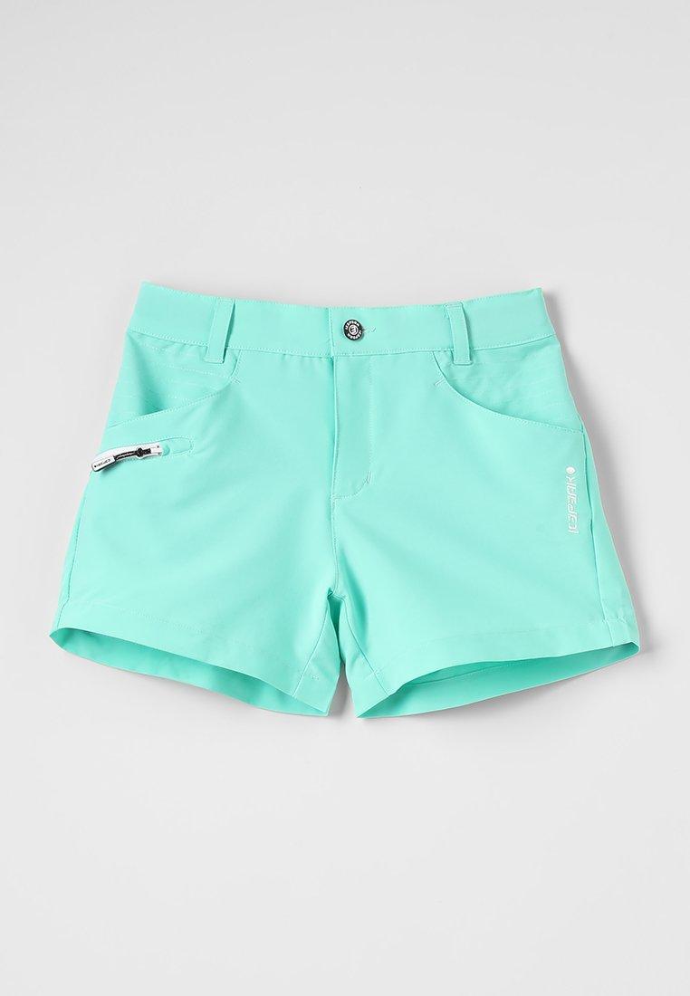 Icepeak - TITANI - Shorts - emerald