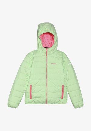 KLINE - Winter jacket - aloe