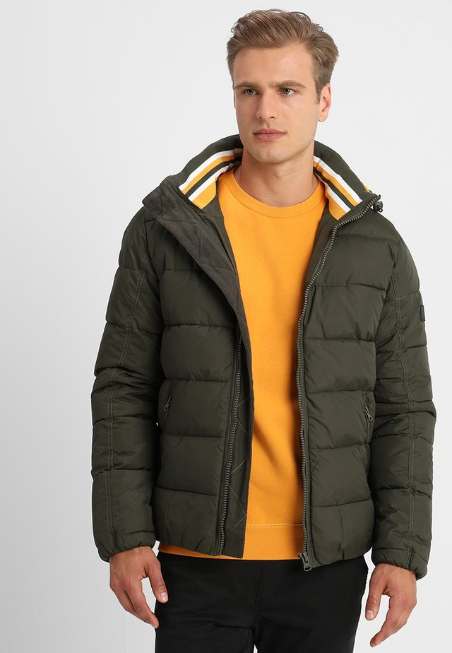 JUAN DIEGO - Winter jacket - forest