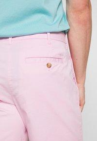 IZOD - SALTWATER - Shorts - pink lady - 4