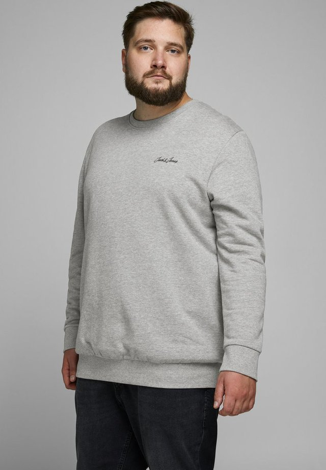 PLUS SIZE   - Sudadera - light grey melange