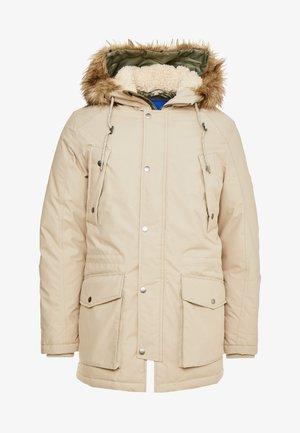 JOREXPLORE - Winter coat - aluminum/solid