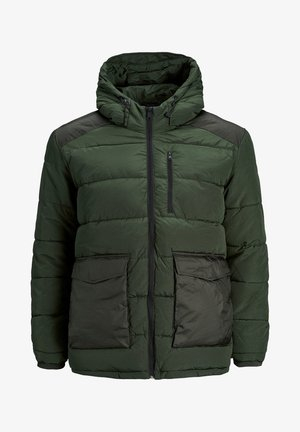 JORWAYNE  - Winter jacket - olive