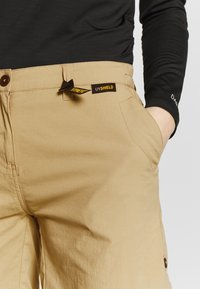 Jack Wolfskin - DESERT SHORTS  - Sports shorts - sand dune - 3