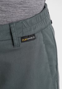 Jack Wolfskin - ARCTIC ROAD PANTS  - Outdoor trousers - greenish grey - 4