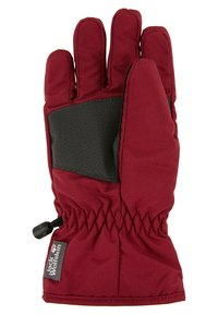 Jack Wolfskin - EASY ENTRY GLOVE KIDS - Gloves - rhododendron - 2