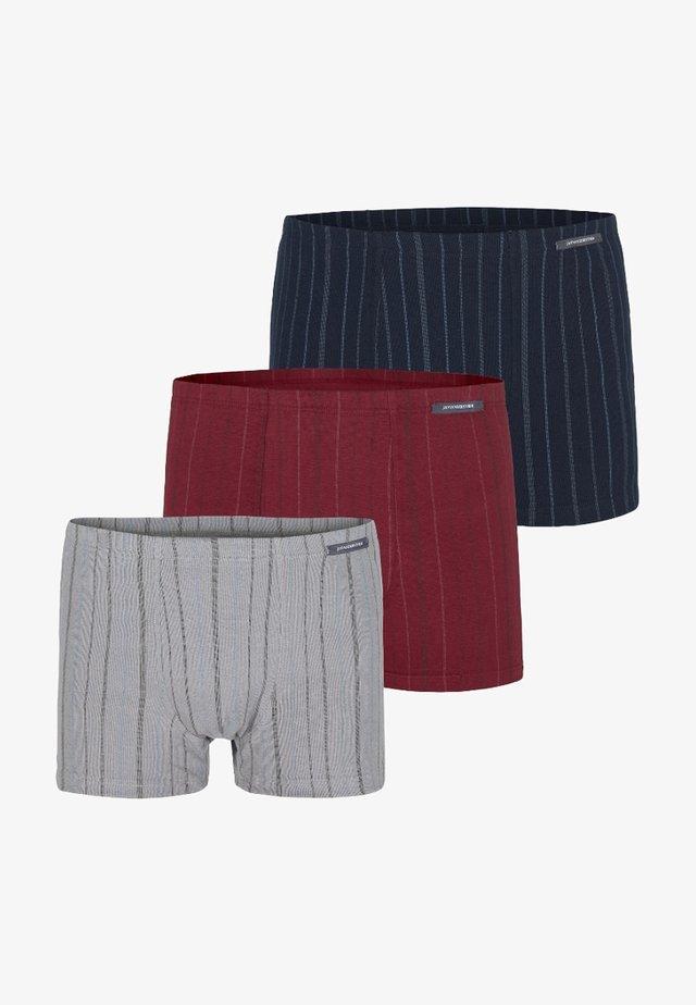 3 PACK  - Shorty - dark blue/ grey/ bordeaux