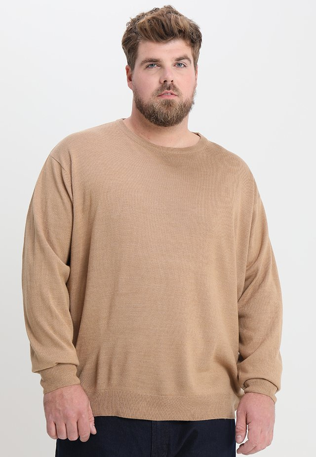 CAPSULE CREW NECK JUMPER - Stickad tröja - mid brown