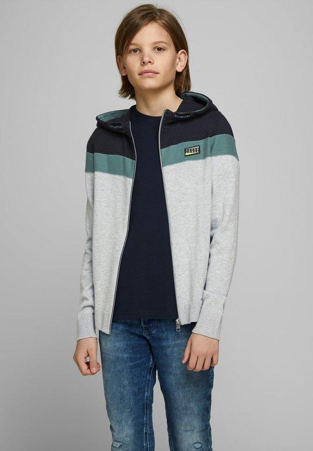 Zip-up hoodie - sky captain