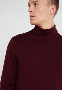J.CREW - XINAO  - Pullover - burgundy - 3