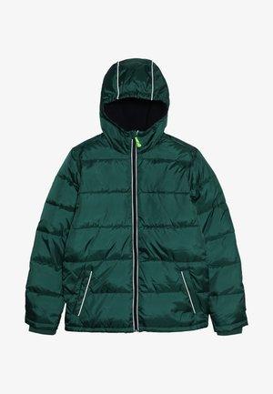 CLASSIC PUFFER - Zimní bunda - deep alpine