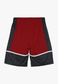 Jordan - GRAPHIC PANEL SHORT - Urheilushortsit - gym red/black - 1