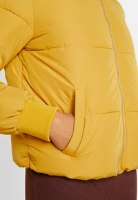 JDY - Winter jacket - harvest gold - 6