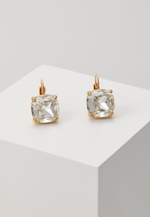 EARRINGS SMALL SQUARE LEVERBACKS - Náušnice - clear