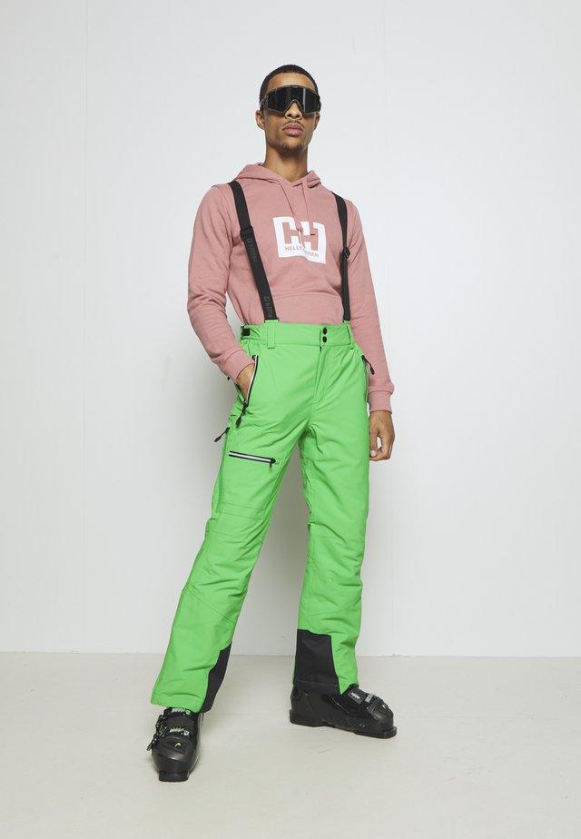 ZAYN - Snow pants - grün