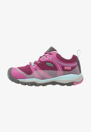 TERRADORA LOW WP - Hiking shoes - boysenberry/red violet