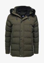 FROST - Winter coat - khaki