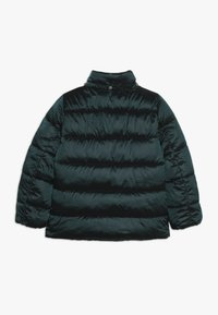Kids ONLY - KONNAIOMI HOODED JACKET - Talvitakki - ponderosa pine - 2