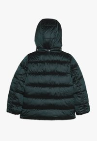 Kids ONLY - KONNAIOMI HOODED JACKET - Talvitakki - ponderosa pine - 1