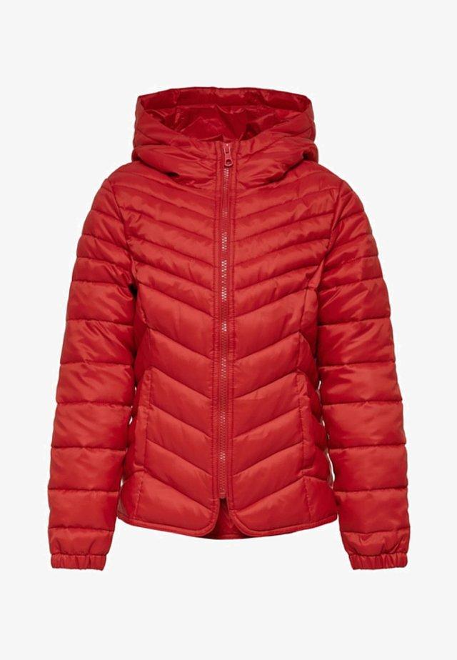 Winter jacket - goji berry