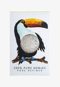 pure/rainforest toucan
