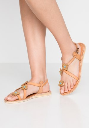 BLYTH FLAT - T-bar sandals - metal gold / turquoise