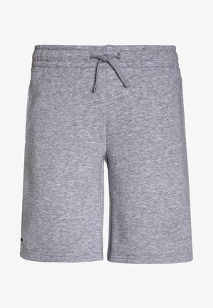 CLASSIC - Träningsshorts - silver chine
