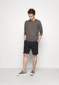 120% Lino - Langærmede T-shirts - elephant sof fade - 1
