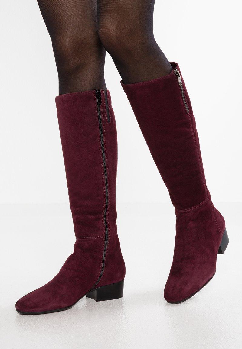 Lamica - TESA - Boots - bordeaux