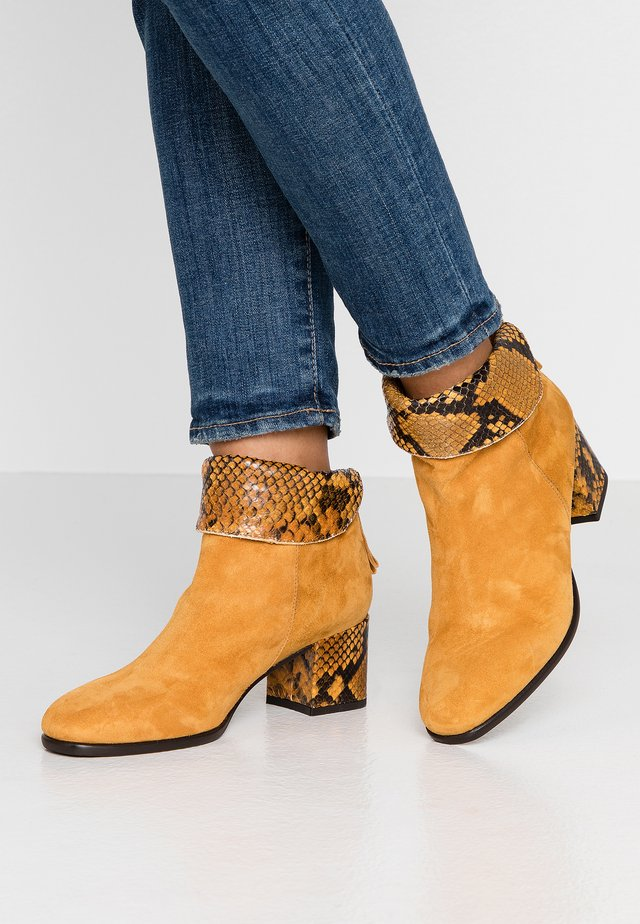 QUENGEL - Classic ankle boots - ocra