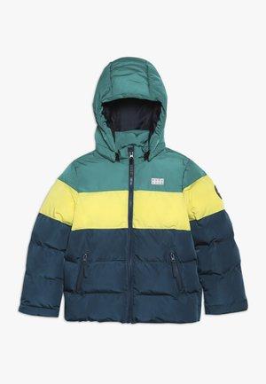 JORDAN 708 - Winter jacket - dark green