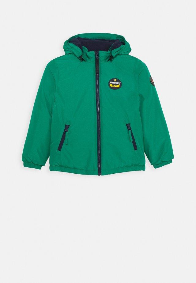 JOSHUA - Winter jacket - light green