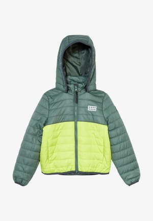 JOSHUA JACKET - Chaqueta de invierno - dark green
