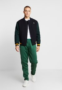 Lacoste LIVE - HH0604-00 - Tracksuit bottoms - green - 1