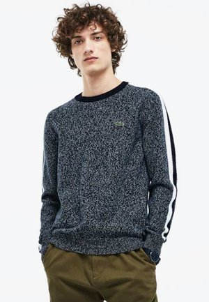 AH9163-00 - Sweter - grey/ black