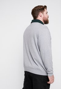 Lacoste - Jumper - pike - 2