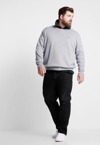 Lacoste - Jumper - pike - 1