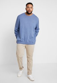 Lacoste - Jumper - alby chine/navy blue - 1